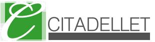 citadellet_likvidationer_050214