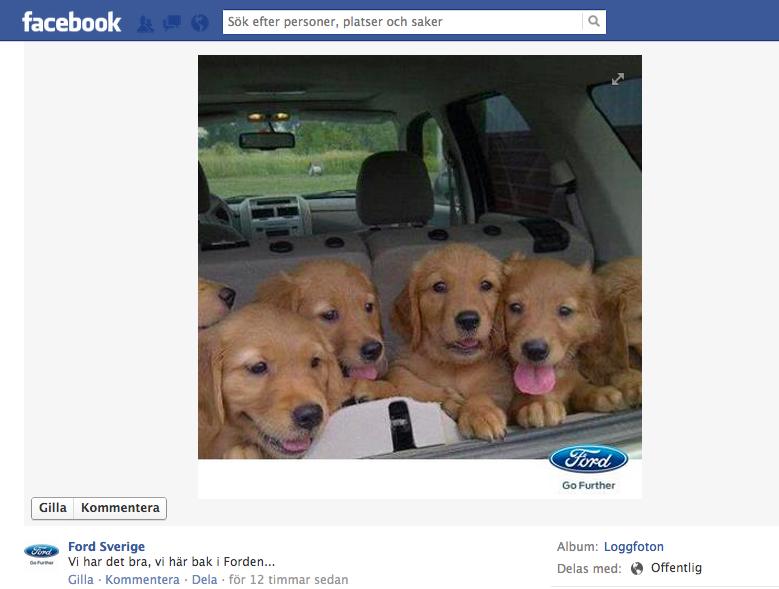 Fords Content Marketing på Facebook. Man kan undra vad hundvalpar, tillför till deras konverteringsprocess?